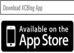 AppSore-XCBlog
